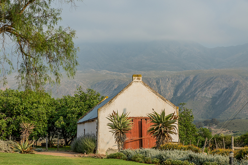 swartberg-country-manor-lodge-6